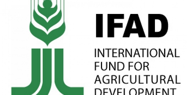 ifad-logo-gidahatti