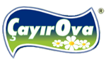cayirova