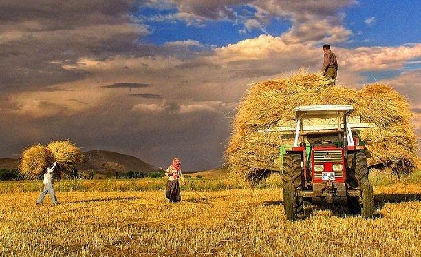 En az kazandıran sektör tarım oldu