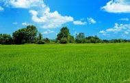 Tarım arazileri için önemli karar! Hangi ovalar SİT alanı ilan edildi?