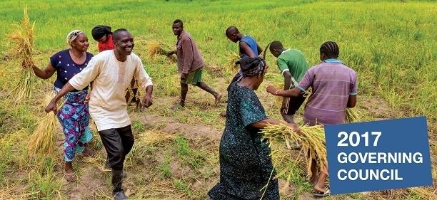 Tarım finansman fonuna Togo'lu başkan!