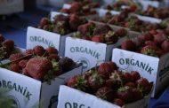 """Tüketicinin gözdesi organik ve """"…içermez"""" gıdalar!"""