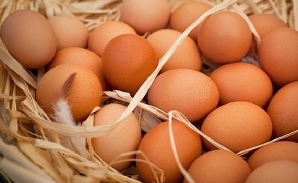 Kanatlı sektörünü 2016'da yumurta kurtardı!
