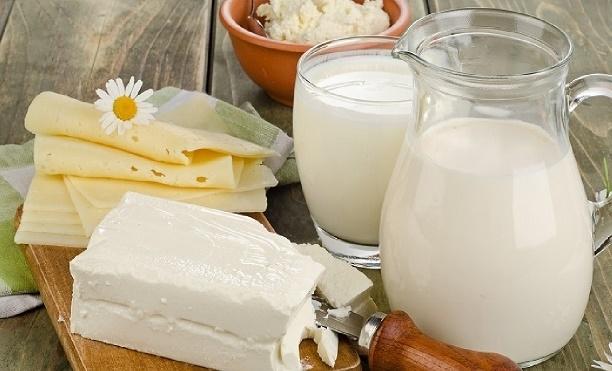 sut-peynir-gidahatti