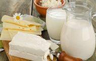 Çiğ Süt Desteği Kriterleri Belirlendi