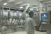 Sanayiye giden süt miktarı azaldı, tavuk eti üretimi arttı