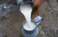 Uzmanlar uyarıyor: Sokak sütü tüketmeyin!