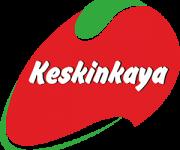 keskinkaya-logo